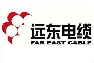 镇江远东电线